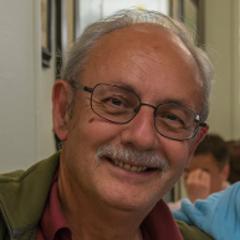 Manuel Vicedo Martínez